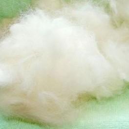 Шерсть собачья нечесаная .Белый цвет.(подшерсток собаки)