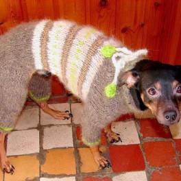 Вязаные комбинезоны для собак    (на заказ по Вашим меркам)